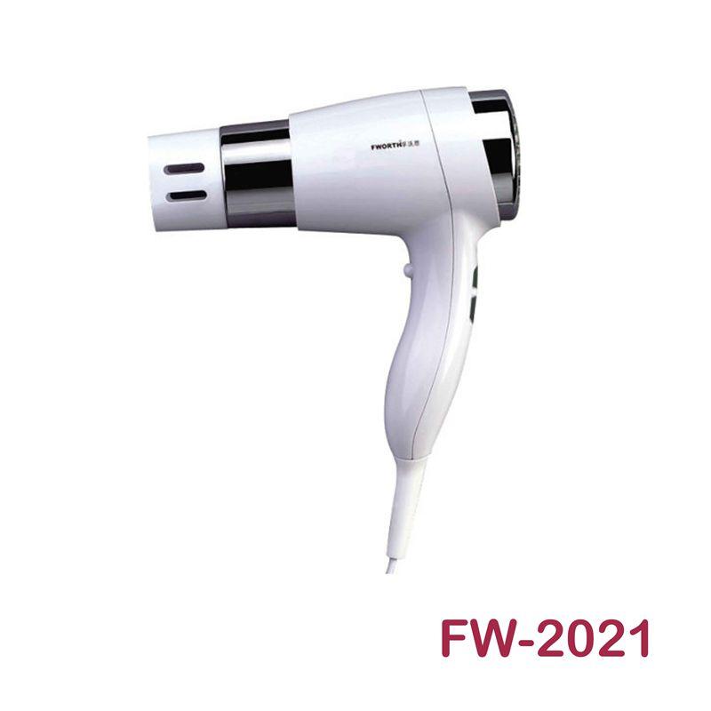 FW-2021电吹风