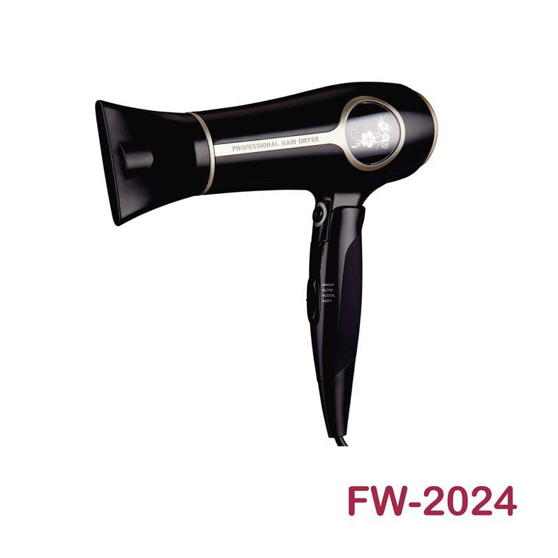 FW-2024电吹风