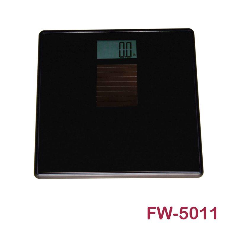 FW-5011人体秤