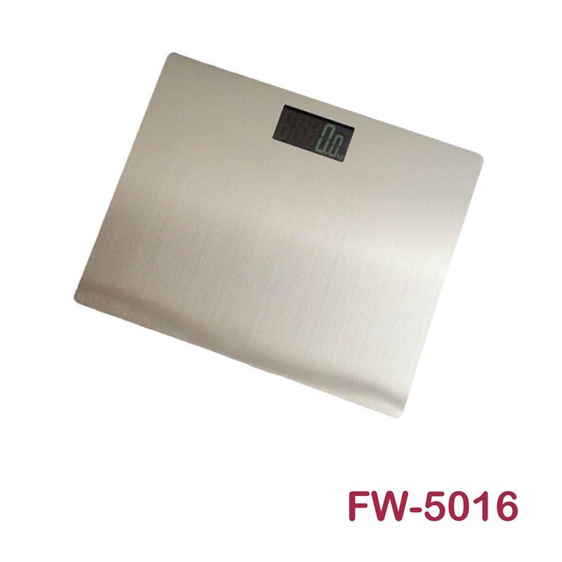 FW-5016人体秤